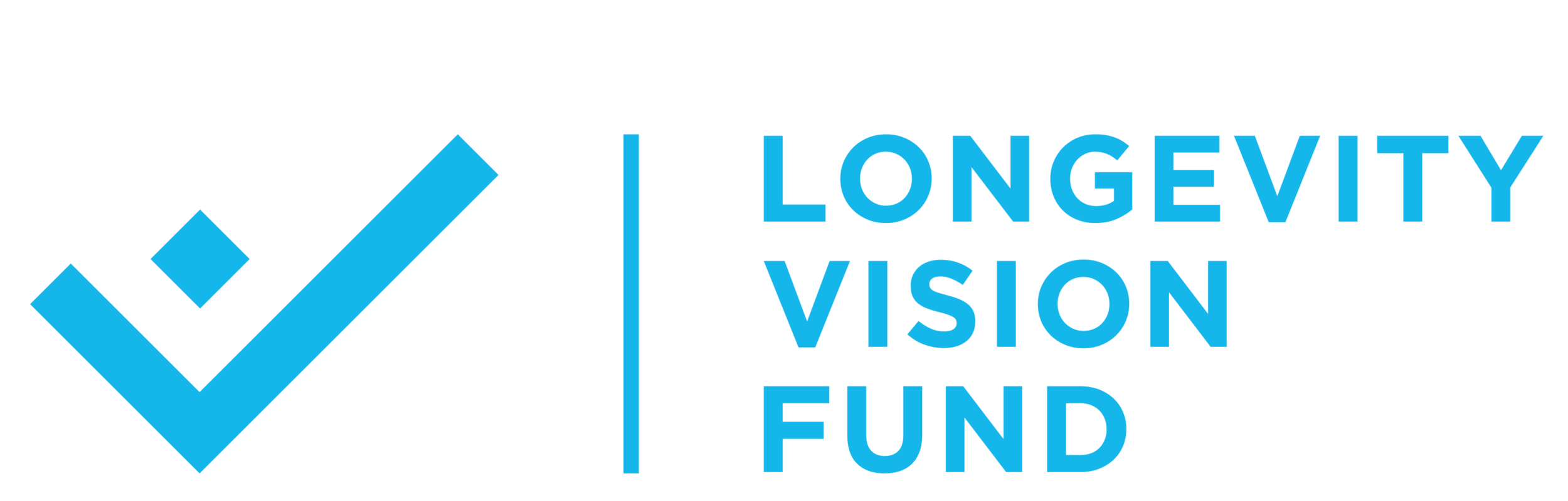 Longevity Vision Fund Logo