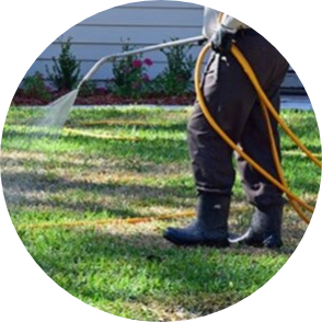 PEST CONTROL - Special Care is always taken to keep fertilizers and chemicals from entering our precious lakes and waterways.