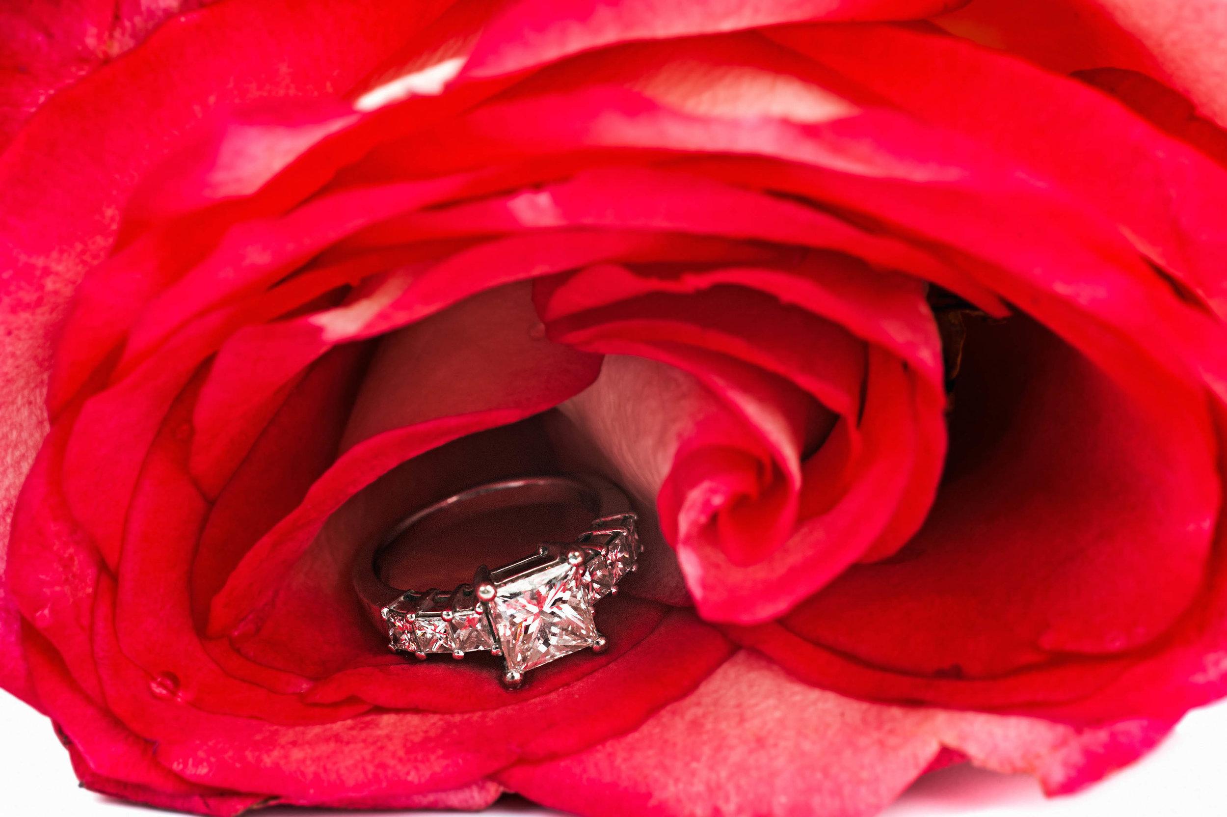 JewelryPhotographyImprint-17.jpg