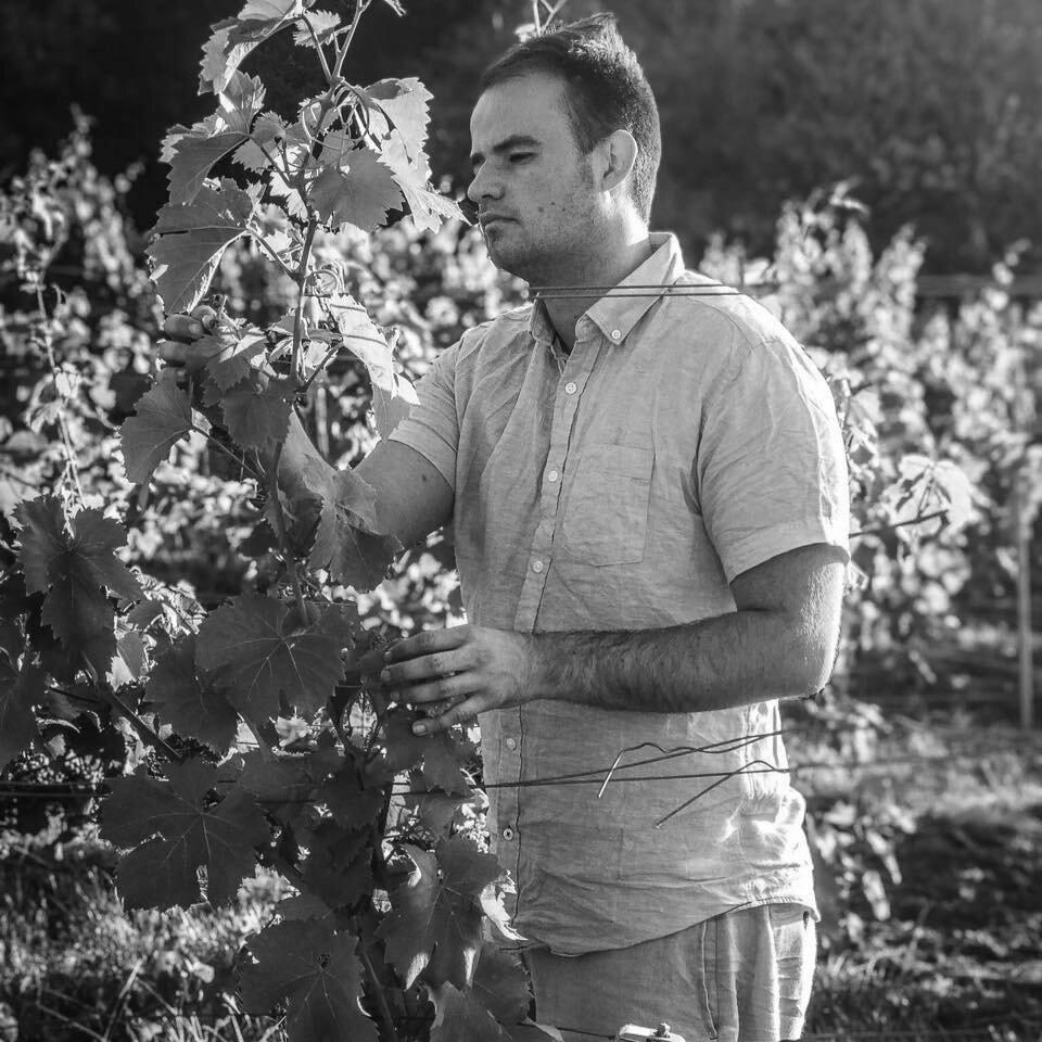 Lorenzo Colle ,  Co&Oil .  Afgestudeerd binnen Verpleegkunde.   Zaakvoerder van kwalitatieve olijfolie, jams & azijn.