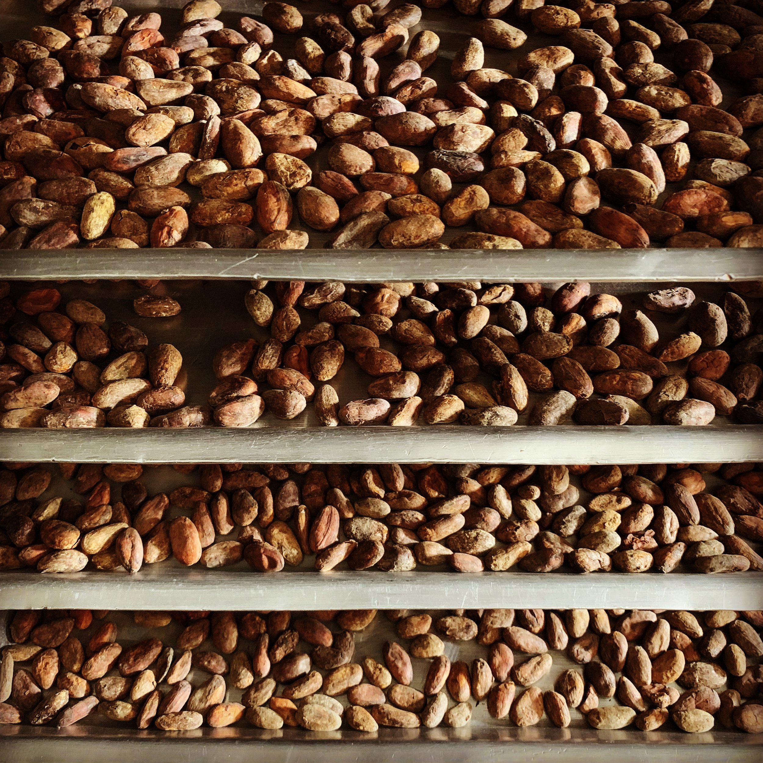 Roasting - Each bean variety has its own individual roasting profile and they are roasted to retain their flavour notes.We adjust how we long we roast and the temperature we roast at, as this is a key stage for the production of chocolate.