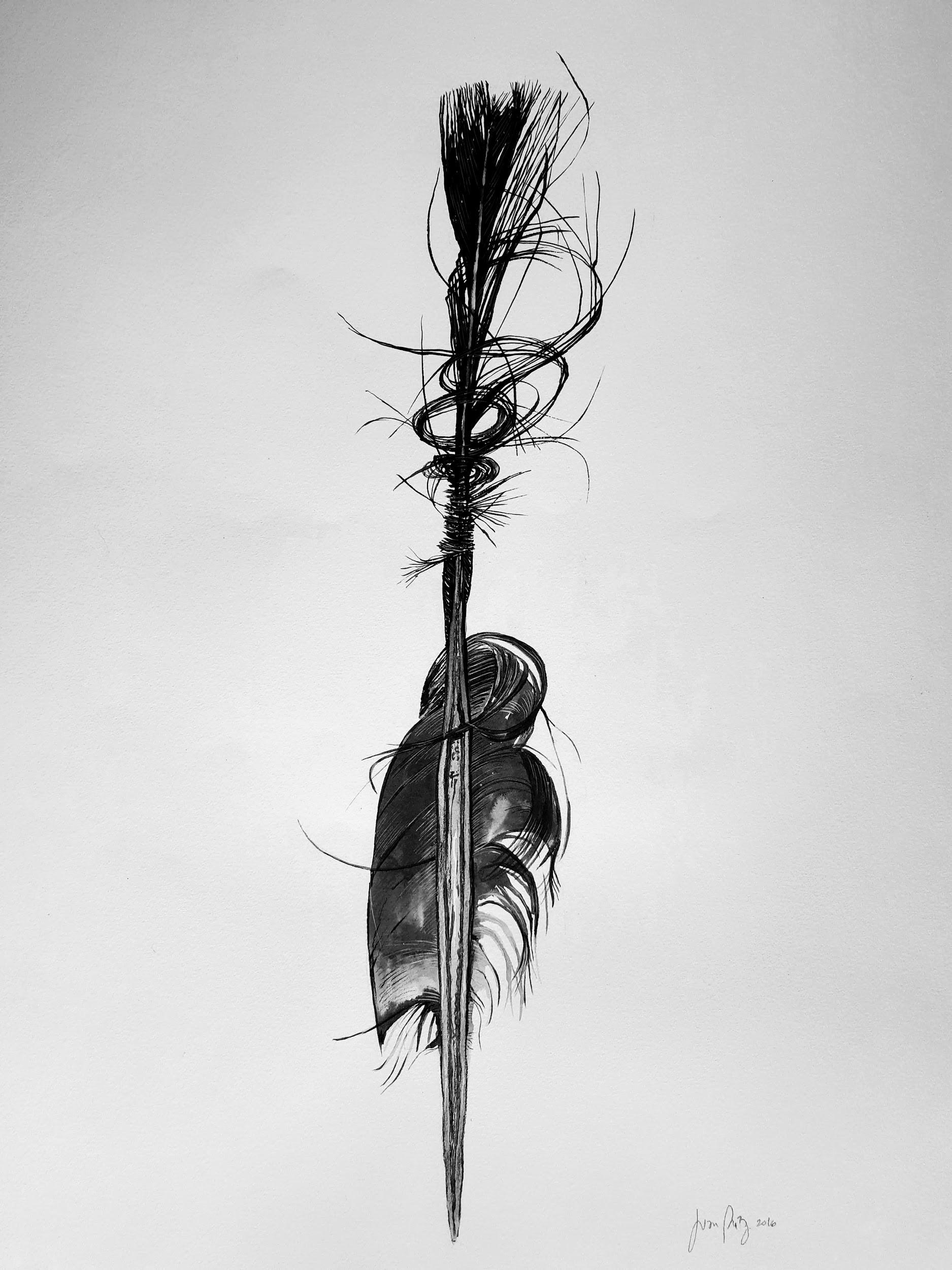 A feather that turns like a tornado to the floor    © Juan Eduardo Páez Cañas