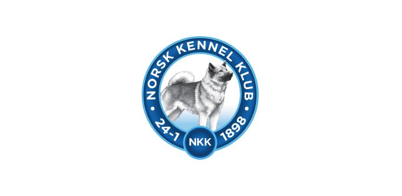 NKK_.png