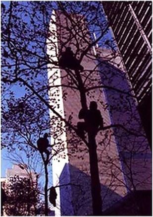 Postcard. Parade for the Yankees. Liberty Street, 1996. Genevieve Hafner.