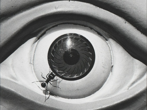 The Unflinching Eye: The Symbols of Davis Wojnarowicz The Fales Library and Collections, Mamdouha Bobst Gallery, New York University Bobst Library 70 Washington Square South July 12 – September 30, 2018