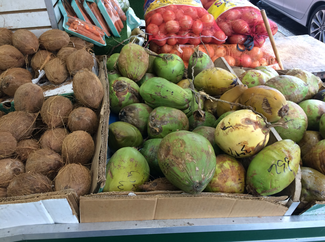 A photo of green and brown coconuts. To the left, the brown coconuts can be found in any grocery store. However, the green coconuts to the right are more traditionally found at West Indian produce stores, such as West Indian Farm Market.