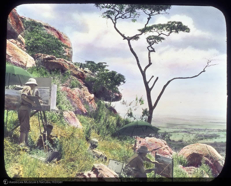 """""""Artists William R. Leigh and Arthur A. Jansson making studies for the Klipspringer Group, Akeley Hall of African Mammals, Lukenya Hills, Kenya, 1926-1927,"""" American Museum of Natural History Research Library 