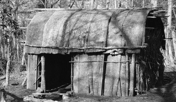Figure 1: Native American bark clad hut. (Photo: Zen at flickr.com)