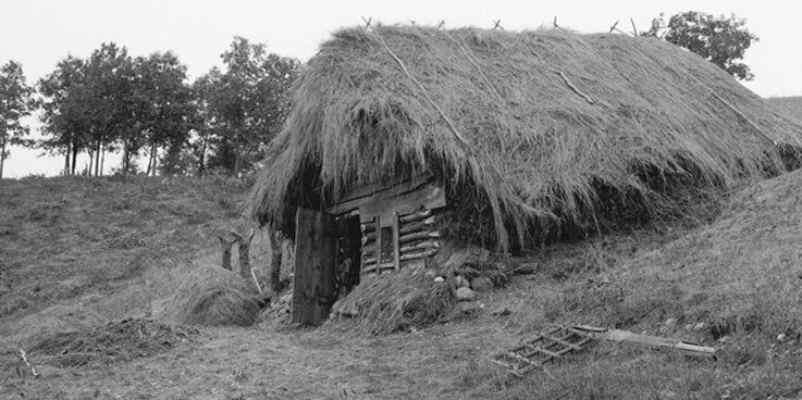 Figure 3: Hillside dugout with a thatched roof (upper Midwest, early 20th century). Though dugouts were built in the early years of both New England and New Netherland, it is rather unlikely that they were ever built on Manhattan. (Photo: The Detroit Company, in the Library of Congress)