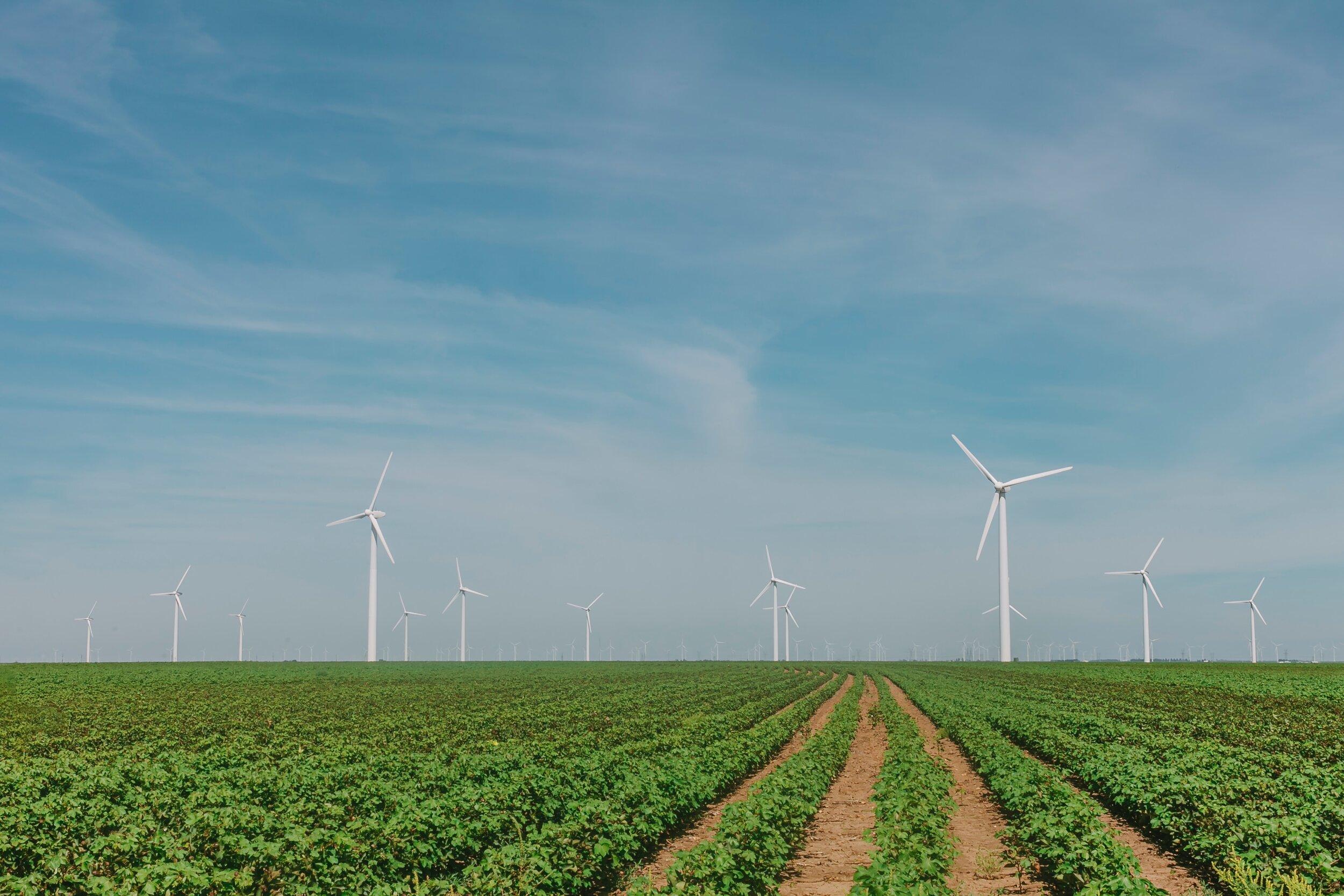 2 windmills.jpg