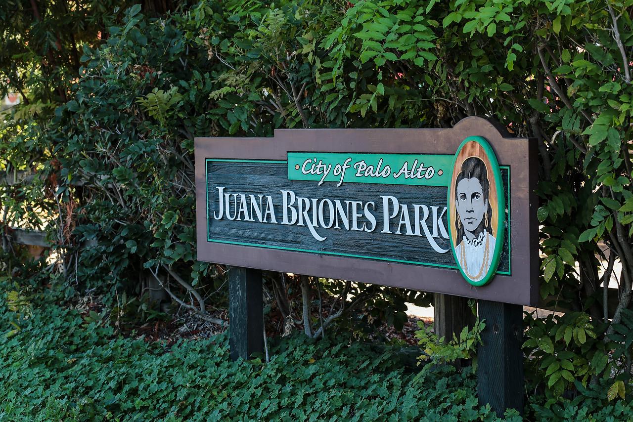 Juana Briones Park.jpg