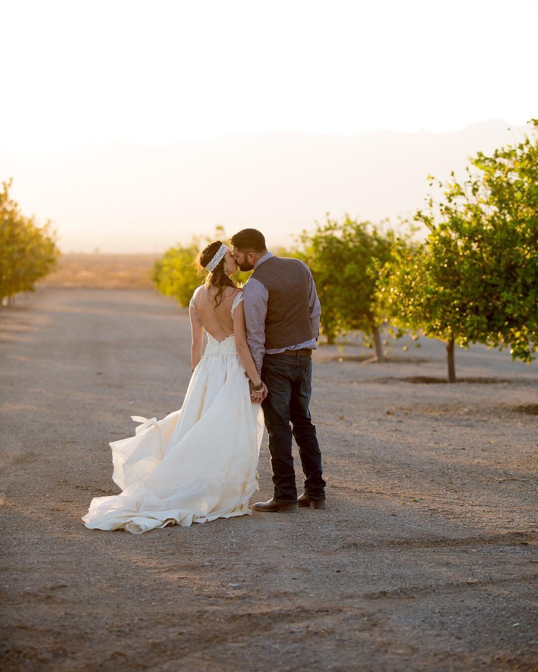 Bride and groom vineyard wedding with custom made vintage backless wedding dress.jpg