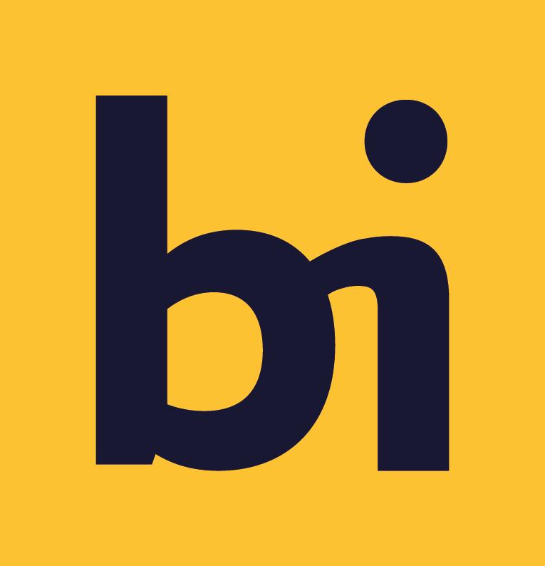BI-renset-06.png