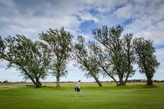 www.scottishgolfphotography.com  #golf #scottishgolf #golfphotography #golftrip #scotland #holeinone #golfswing #golf #golfmates