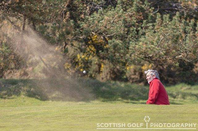Not everyone makes it look this easy to get out of Carnoustie's treacherous bunkers! . www.scottishgolfphotography.com #bunker  #scottishgolf #visitscotland #golf #golfphotography #travelphotography #instagolf #scottishgolfphotography #carnoustie #homeofgolf #linksgolf #scottishgolftours #golftours #golftourphotography #instascotland #scotlandgolftrip
