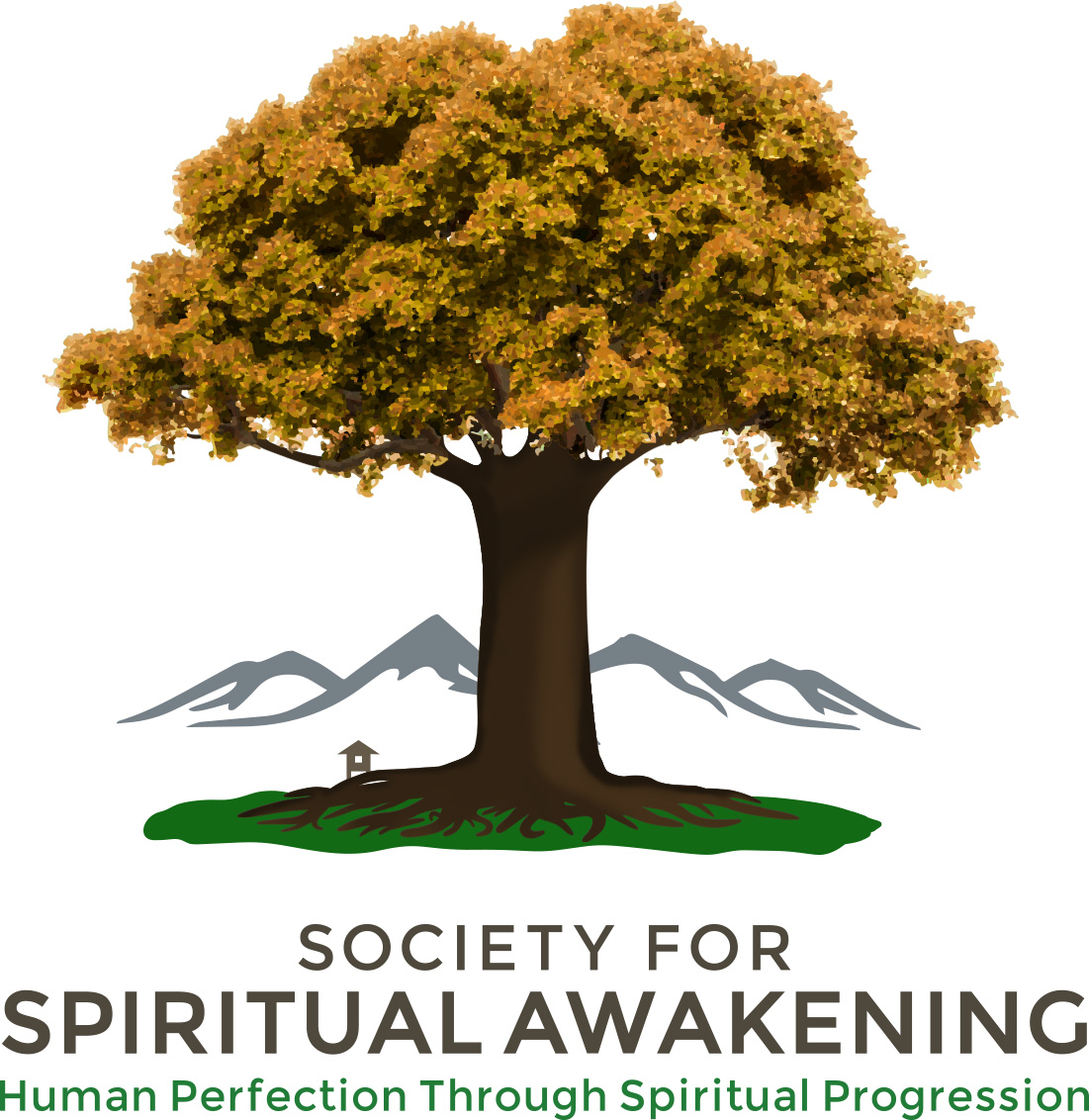 - I pursued spiritual development and meditation with the group that would eventually become the non-profit organization, Society for Spiritual Awakening.