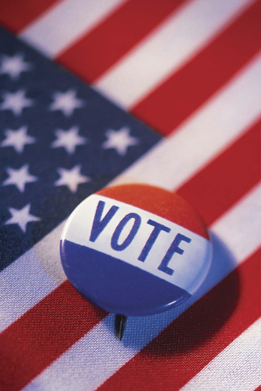 WH_VoteButton.jpg