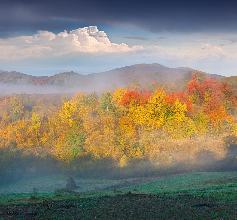 WH_KY_Landscape.jpg