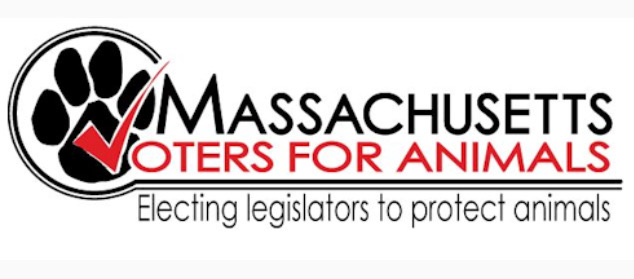Mass Voters for animals helps elect lawmakers who will pass humane laws and advocate for animal rights.   http://massvotersforanimals.org