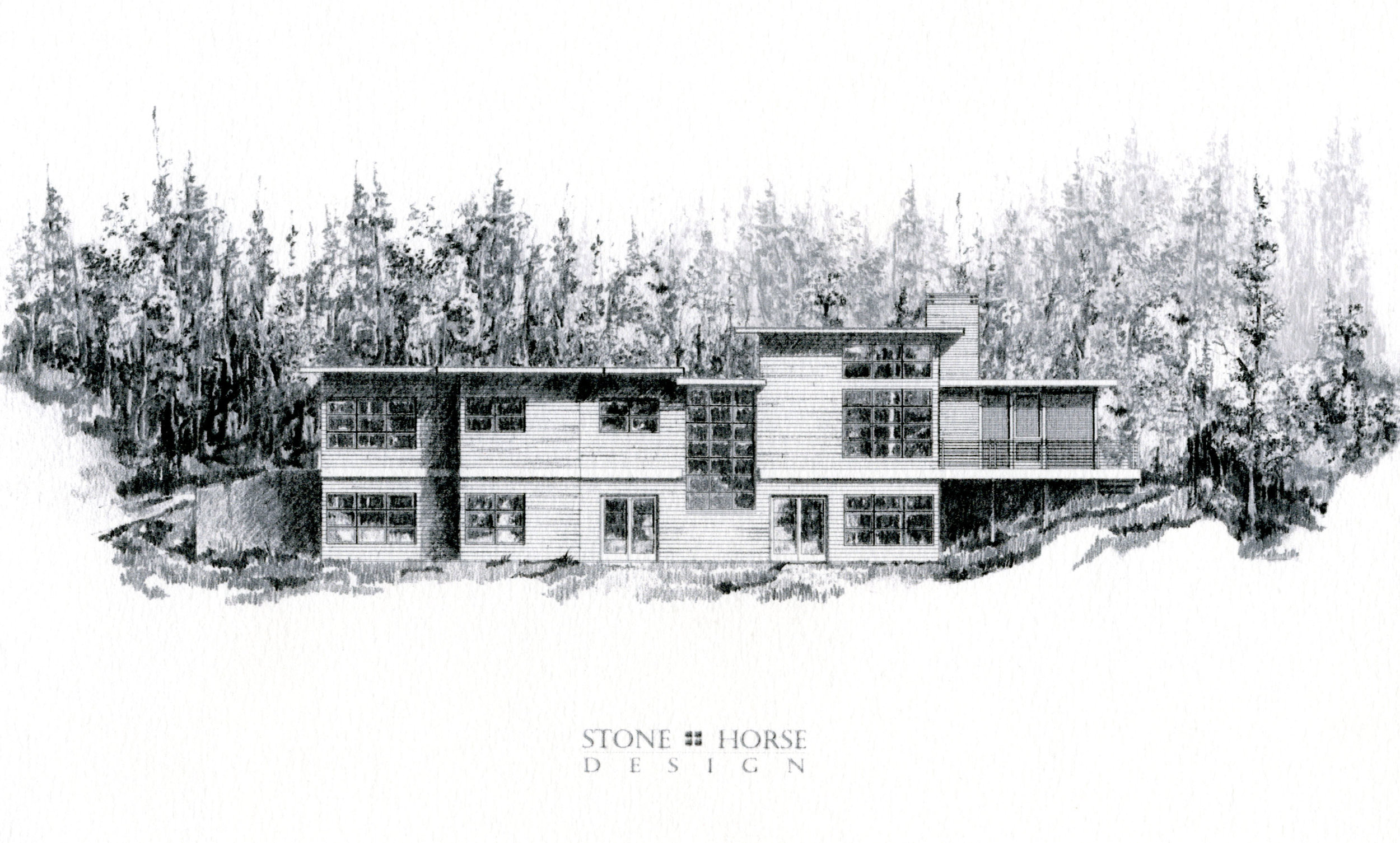 House in the Woods 2.jpg