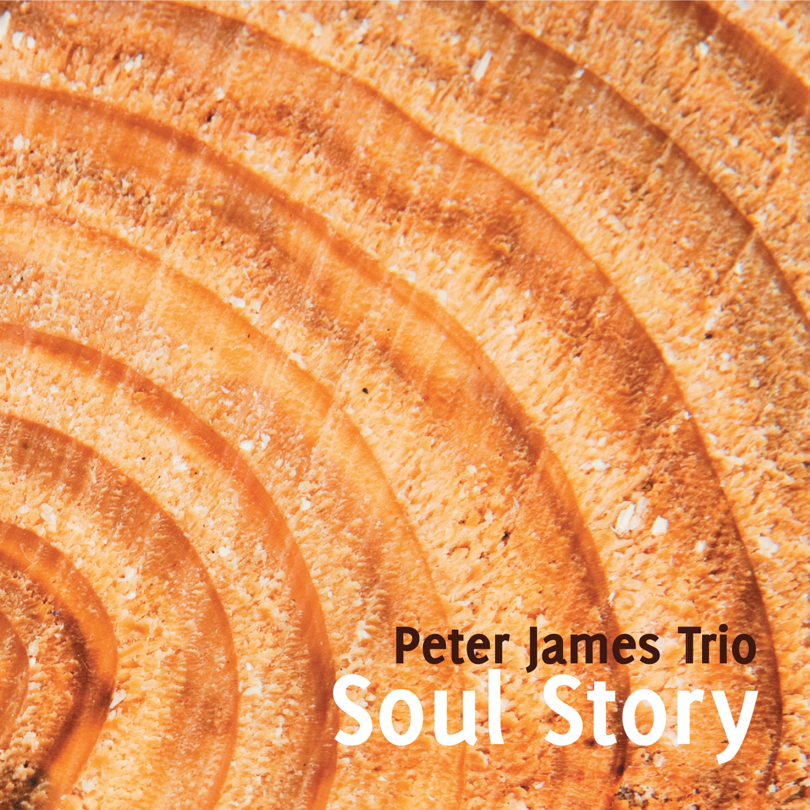 (2011) Peter James Trio - Soul Story