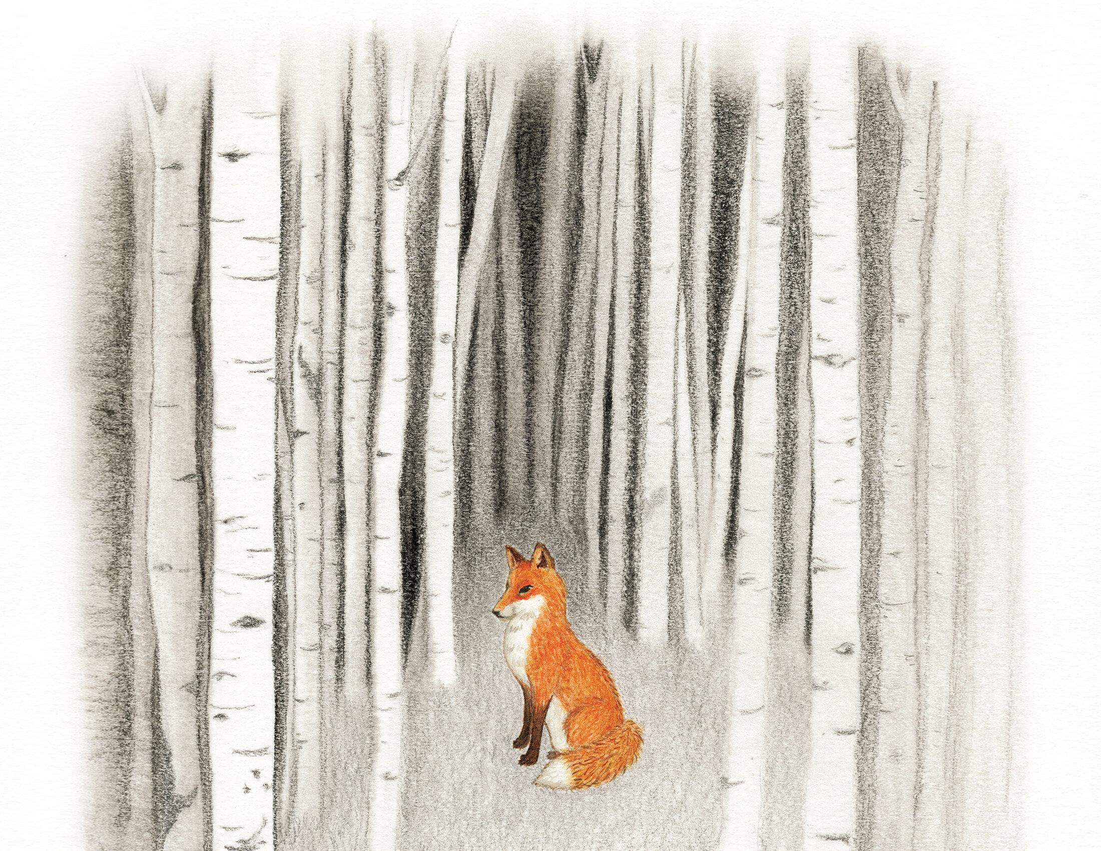 fox_horiz.jpg