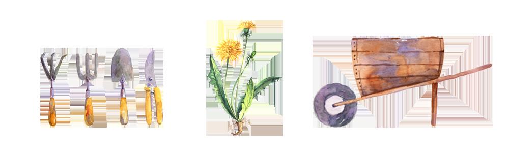 gardening tools illustration.png