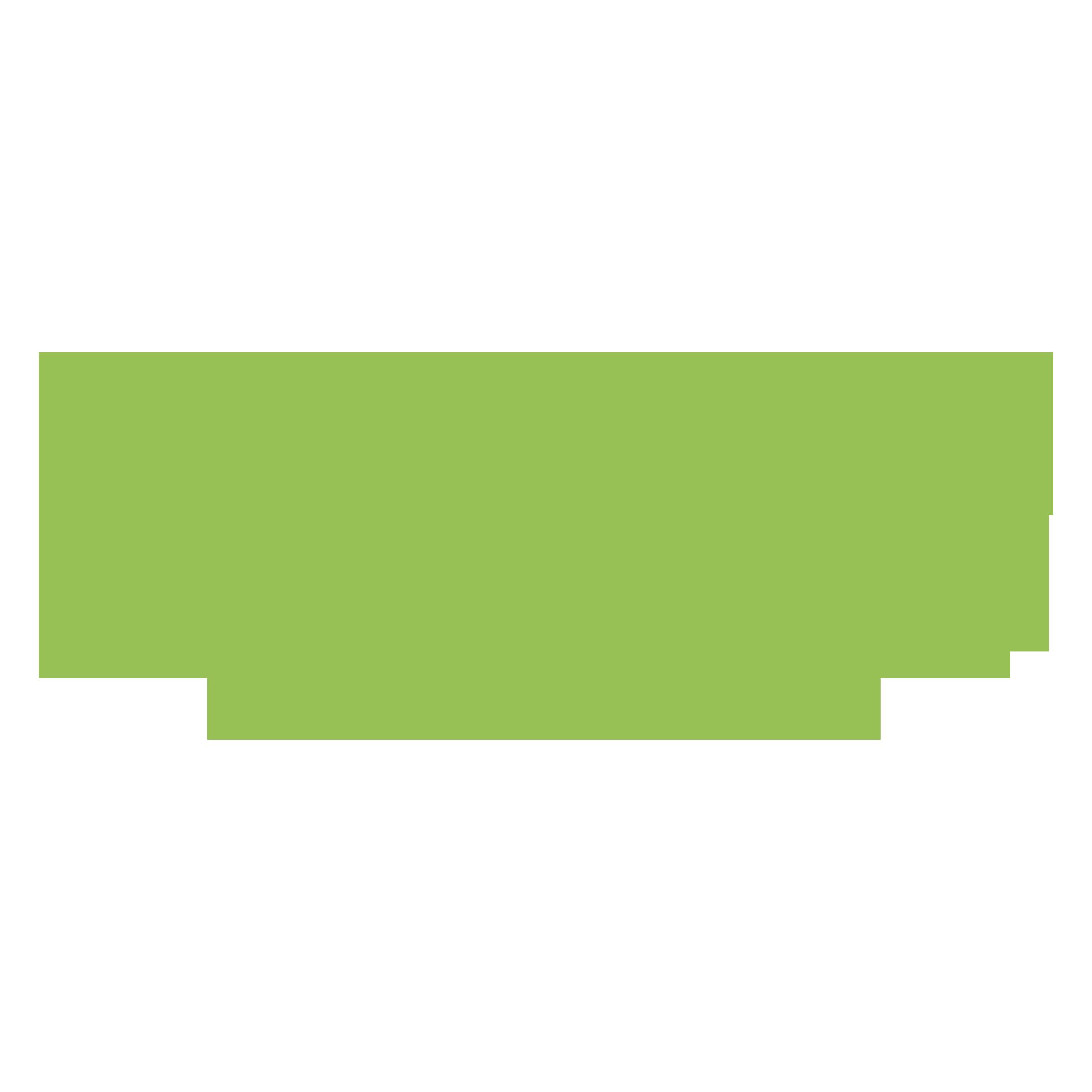 stonyfield organic logo.png