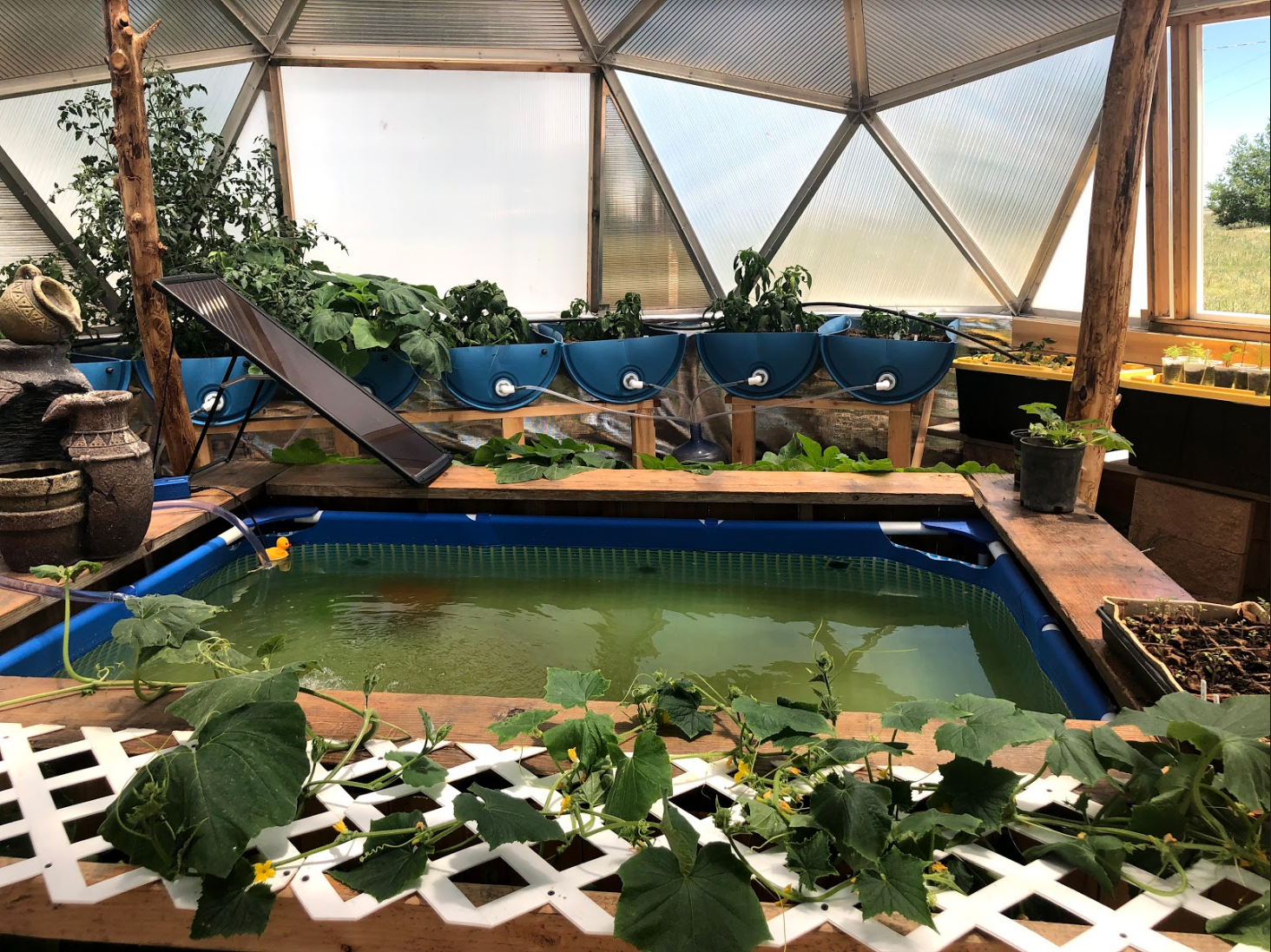 Versatility to meet your needs - We build multi-purpose domes that can serve as an excellent growing space, recreational space or used for educational purposes. The possibilities are endless. Learn more about how people are using their domes here!