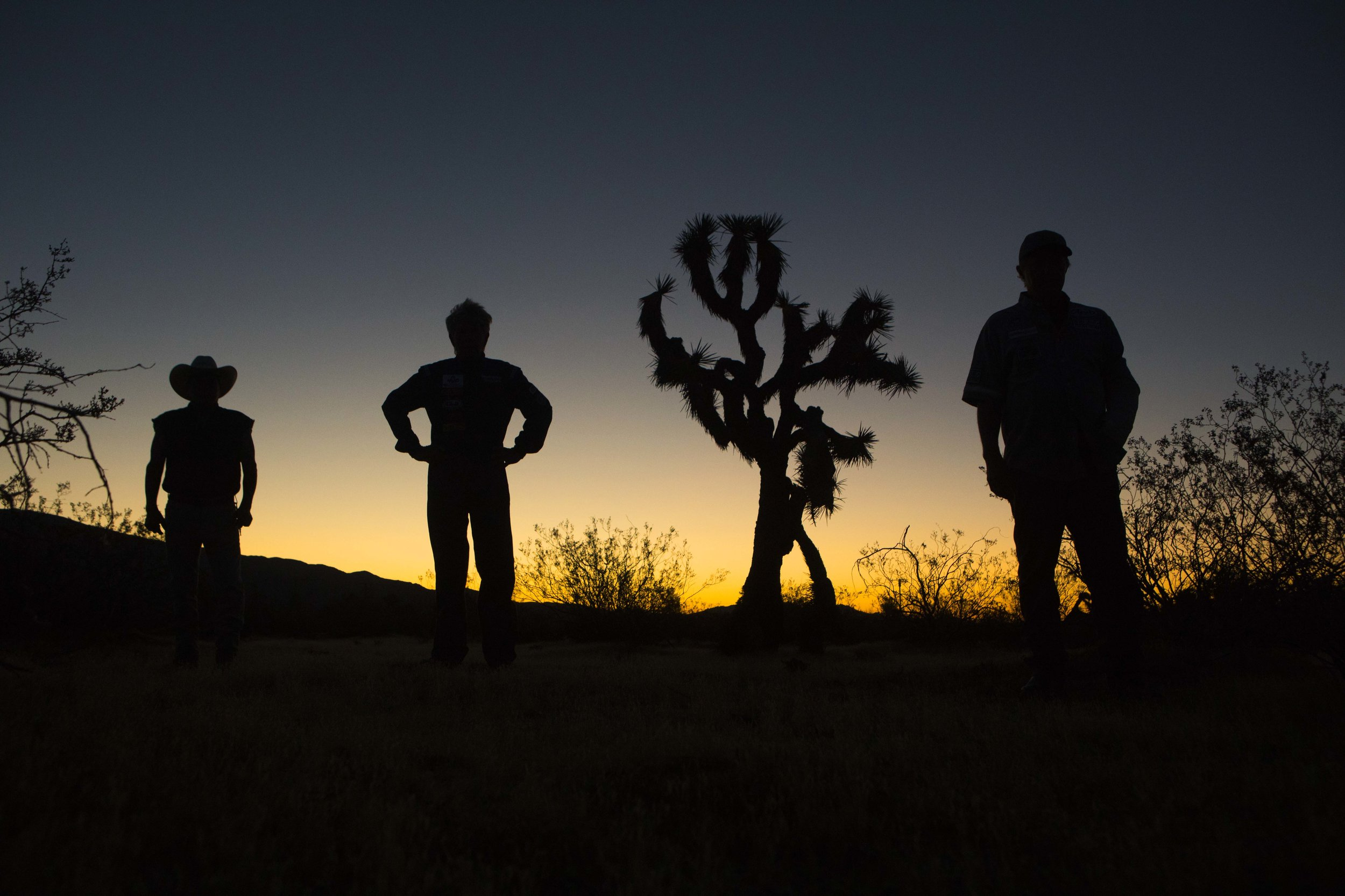 The flat-Earth rocket team stand next to a lone Joshua Tree in the High Desert.