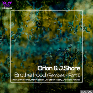 - Orion, J.Shore - Oasis (Stray Theories Remix)