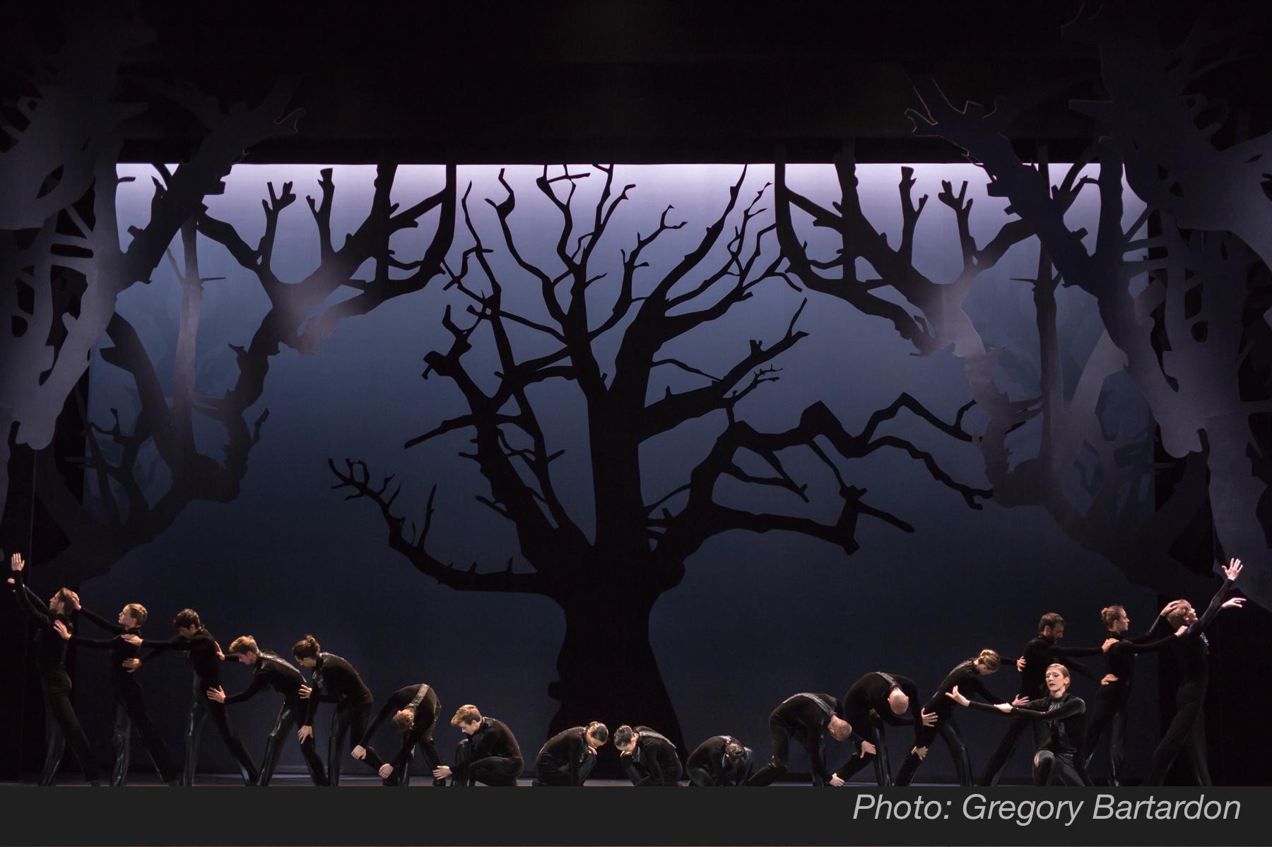 Ballet du Grand Théâtre de Genève -