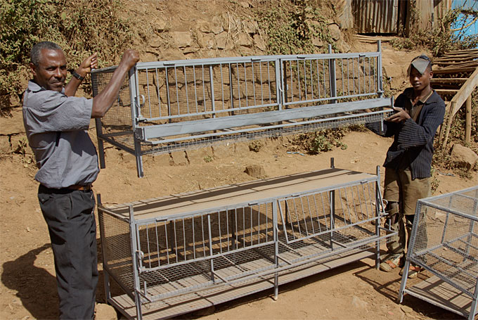 Community members in the city of Kolfe in Addis Ababa, setting up chicken coops