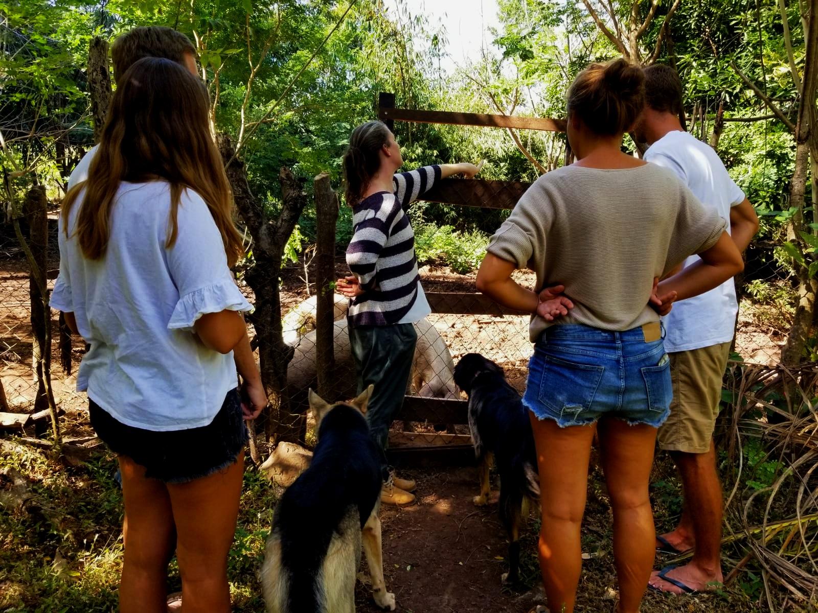 Permaculture+Farm+Tour+La+Bambouseraie+Ometepe