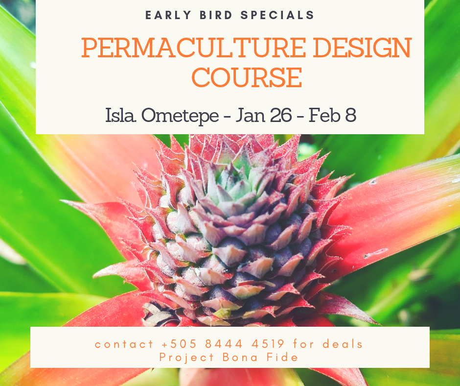 Discounts on Permaculture Design Course 2020 Central America