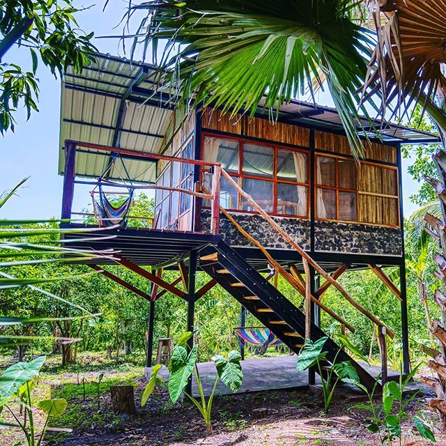We're waiting for you... . . . #casapalmera #bambouseraie_ometepe  #handcrafted  #edibleforestgardens  #foodforest  #palmtrees  #islaometepe  #ometepeisland  #ometepenicaragua  #ometepe  #junglecabinsometepe  #relaxinnature  #sustainablebuildings  #sustainabletravel  #sustainabletourism  #cabinlove  #cabinlife  #junglecabin  #jungleviews  #junglecabins  #cabinliving  #cabininthejungle  #cabininthewoods  #cabinporn  #bamboobamboo  #bamboofurniture  #cabinstyle  #bamboo  #comeandstay