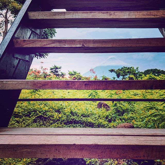What a welcome! 🗻🏞️ Quite the entrance, eh? . . Who would you like to scale those stairs with? . . #casamalinche  #bambouseraie_ometepe  #bamboohouse  #bamboocabin  #bamboocabins  #bamboofurniture  #sustainablebuildings  #sustainabletravel  #sustainabletourism  #butterflyhaven  #ornamentalplants  #plantasornamentales  #mariposas #cabañas  #junglecabinsometepe  #junglecabin  #cabañasdebambu  #floweringplant  #floweringtree #volcanoconcepcion  #concepcionvolcano  #volcanoconception  #comeandstay  #comevisit #islaometepe  #ometepeisland  #ometepenicaragua  #volcanoviews