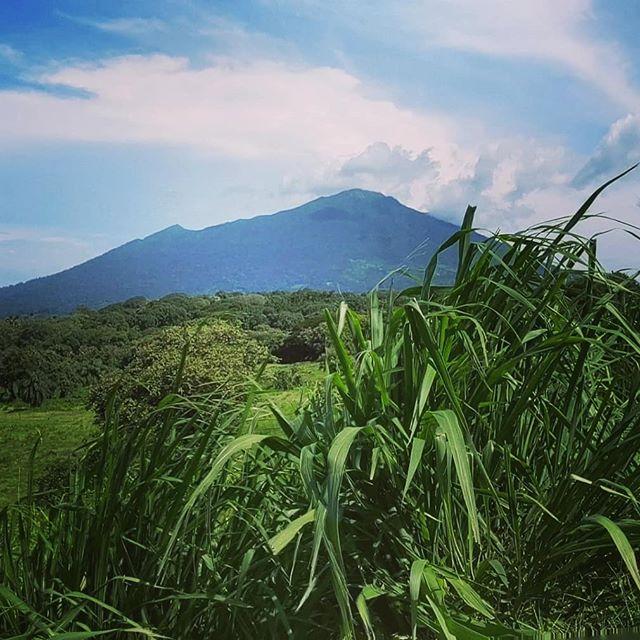 Maderas Volcano as seen from La Primavera! 🏞️ . . . . .  #maderasvolcano  #volcanomaderas  #ometepenicaragua  #ometepeisland  #ometepe #islaometepe  #landoflakesandvolcanoes  #lagococibolca  #lakecocibolca  #cocibolcalake  #lakenicaragua  #lakenicaragua🗻  #discoverometepe  #discovernicaragua  #centralamericatravel  #centralamericantravel  #viajarcentroamerica  #mochilera  #beautifuldestinationsaroundworld  #beautifuldestinations  #ometepeadventures  #craterlagoon  #volcanohike  #hikemaderas  #hikingholiday  #experienceometepe  #cloudforest  #bambouseraie_ometepe