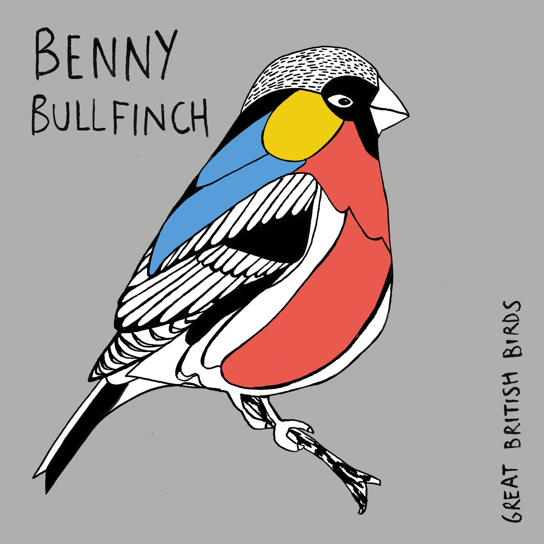 BIRDS_Benny_Bullfinch_Card.jpg
