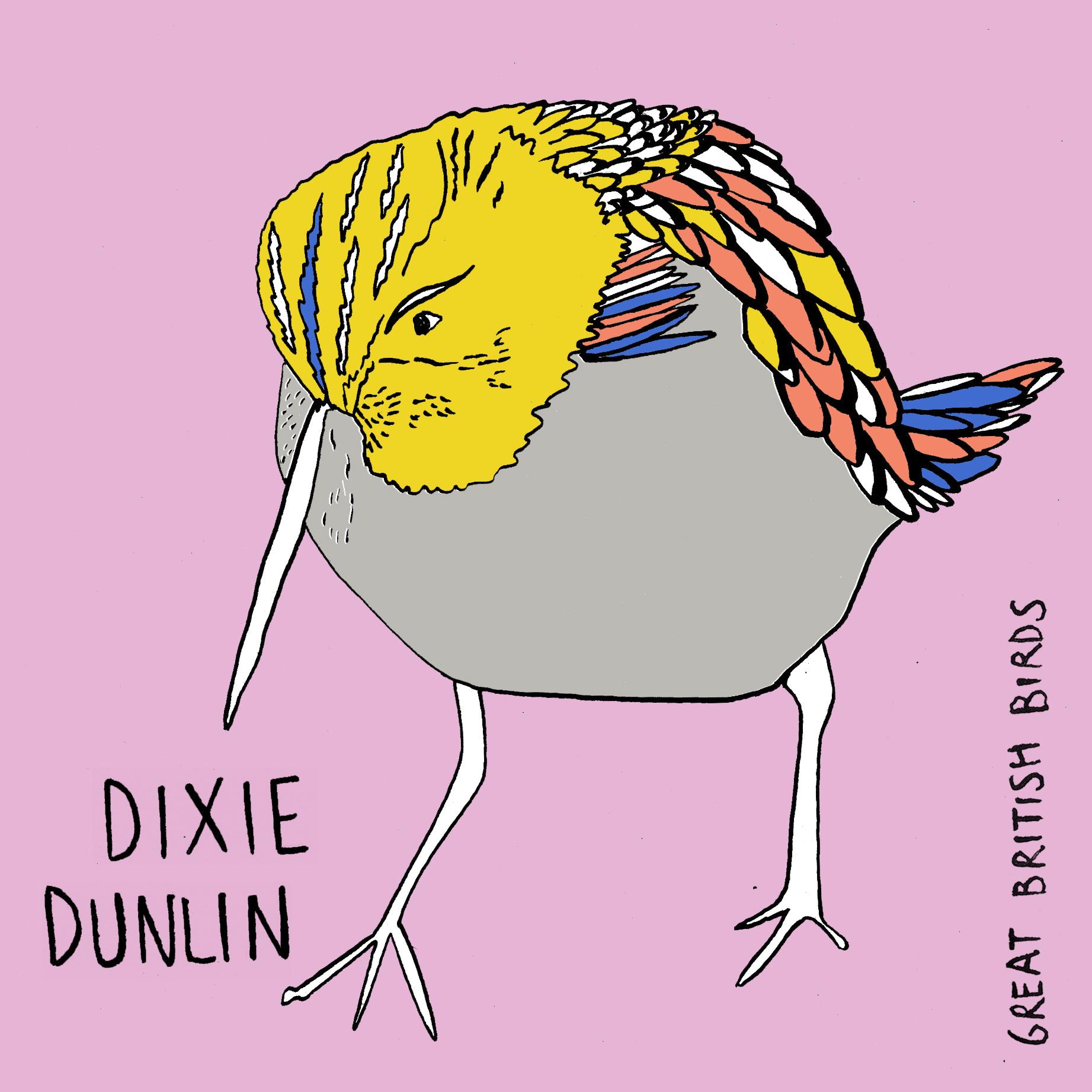 BIRDS_Dixie_Dunline_Card.jpg