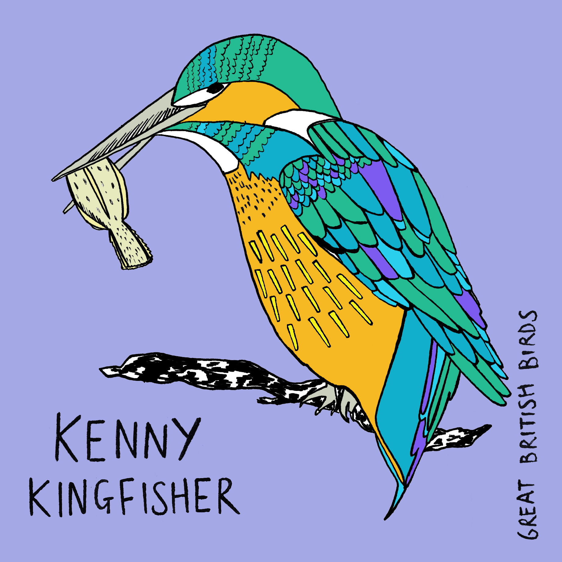BIRDS_Kenny_Kingfisher_card.jpg