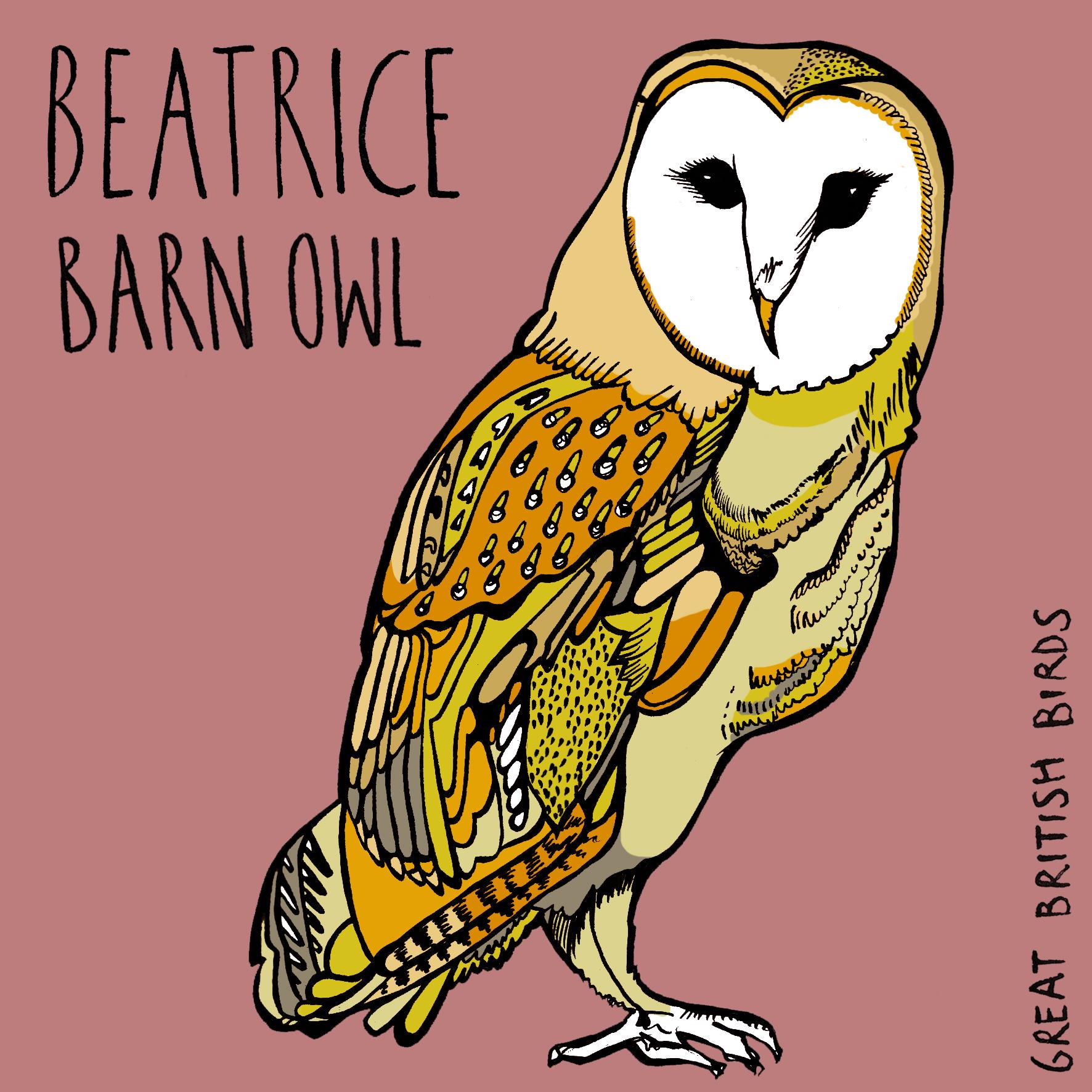 Beatrice Barn Owl.jpg