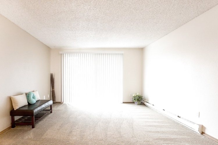 benson-village-apartments-2-living-window.jpg