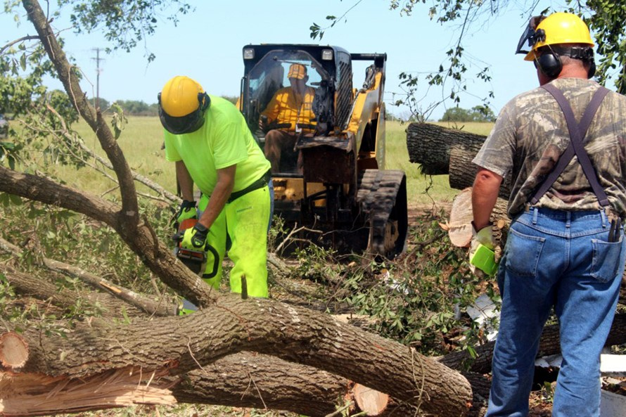 47261a11-9566-4a7c-99e0-b28bbc62f9d2-SBTS-chainsaw-crew-and-tractor.jpg