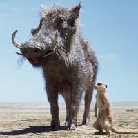 Timon-Pumbaa.jpg