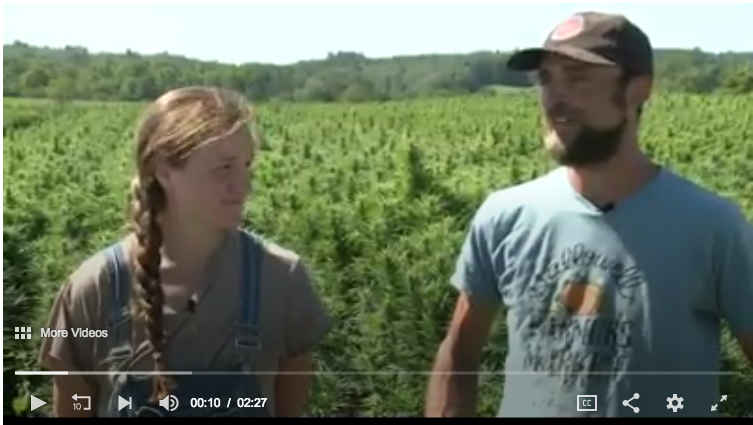 HEMP FARMING IN MAINE… Channel 6 News Friday, August 30th, 2019