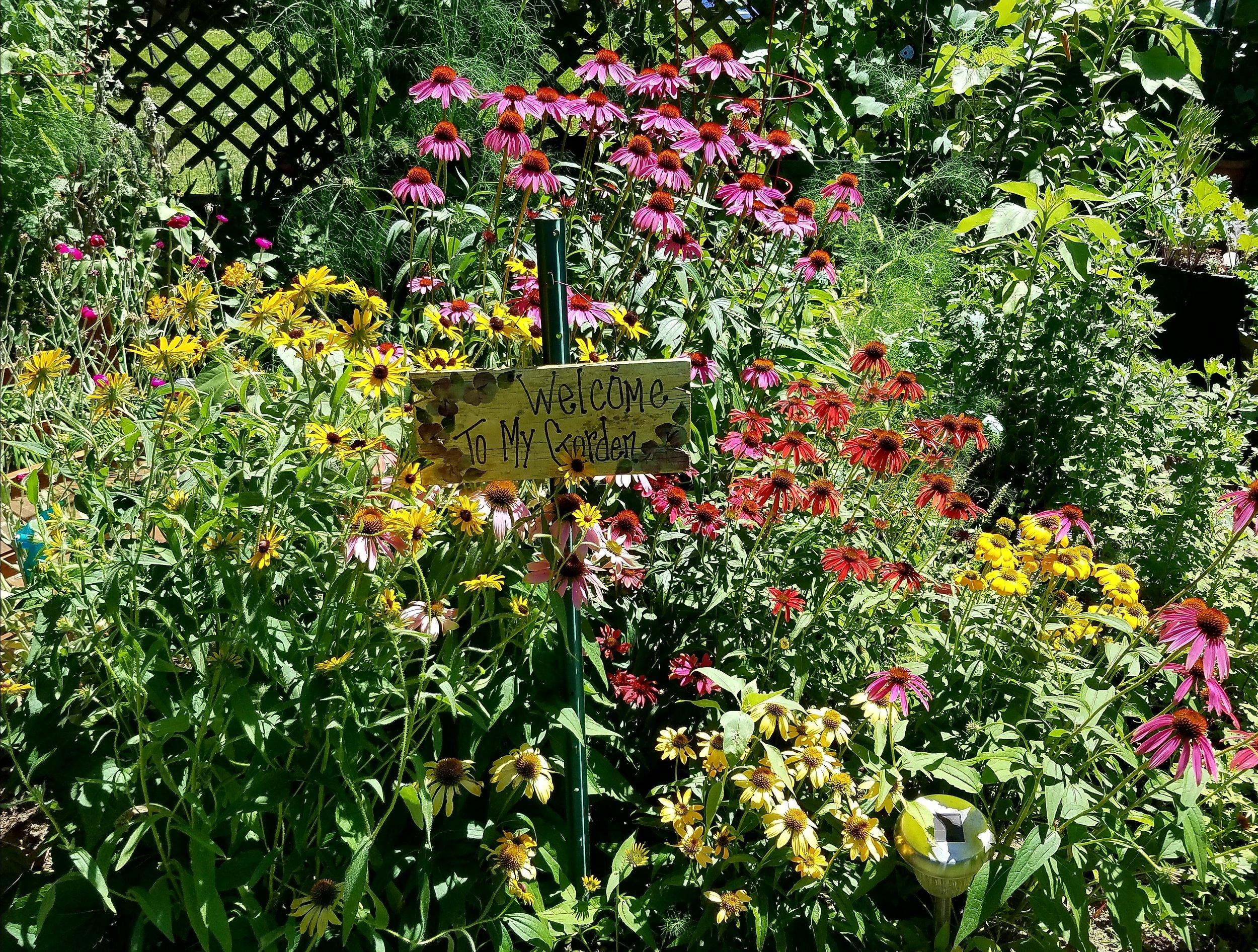20180707_Pollinator Garden.jpg