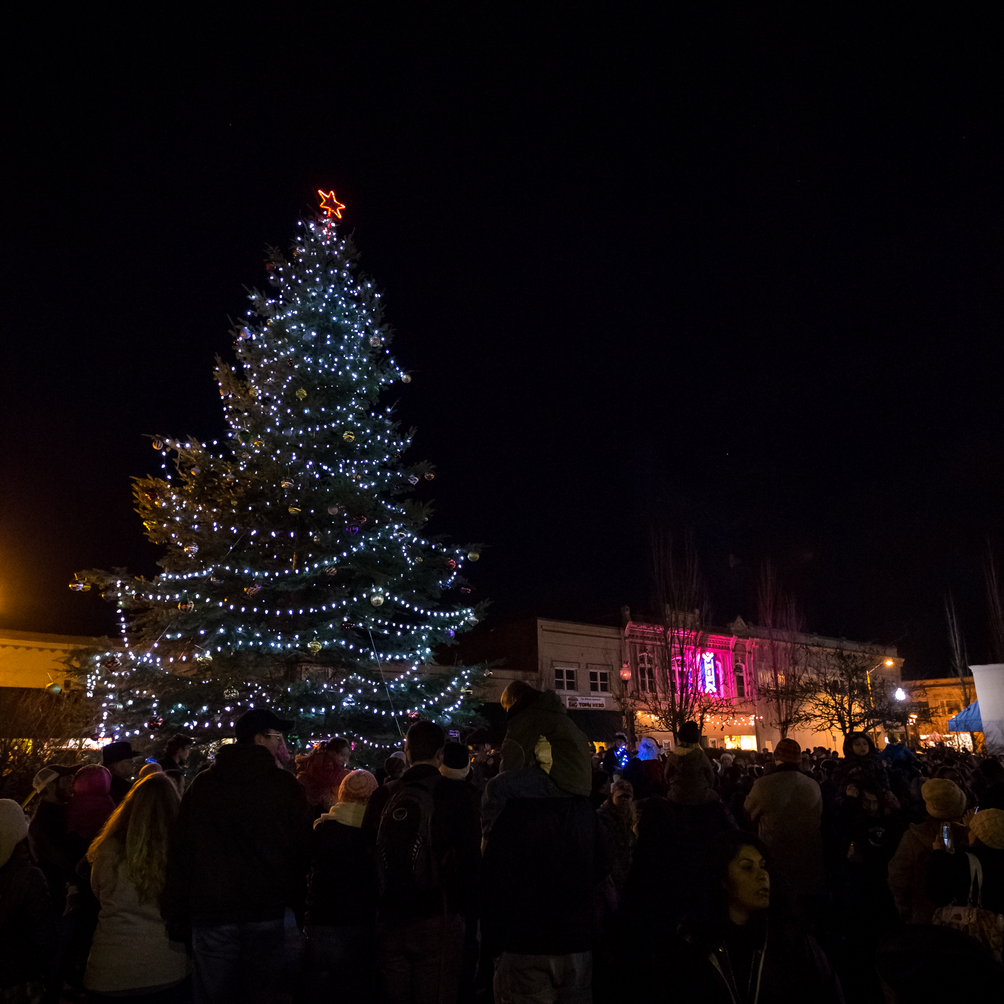 ADA-Twice-Around-Parade-and-Tree-Lighting-2016-691_.jpg