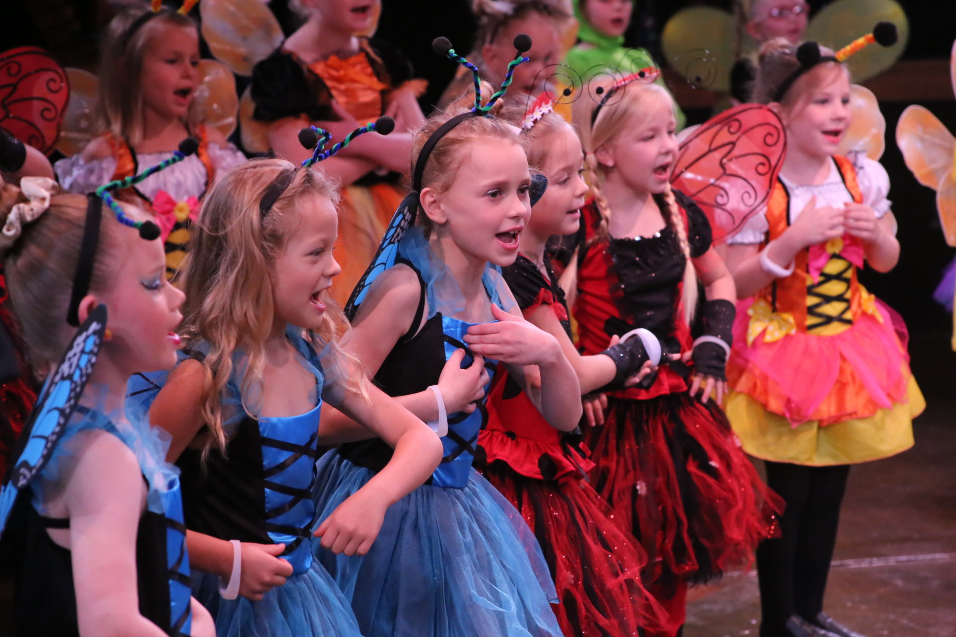 Little Performers - Ages: 4-7Little Performers A, B, and C- Theatre comes to life for young ones in this energetic class! Through games, musical activities and play, children explore the basics of performing. In the spring they will produce a mini-musical