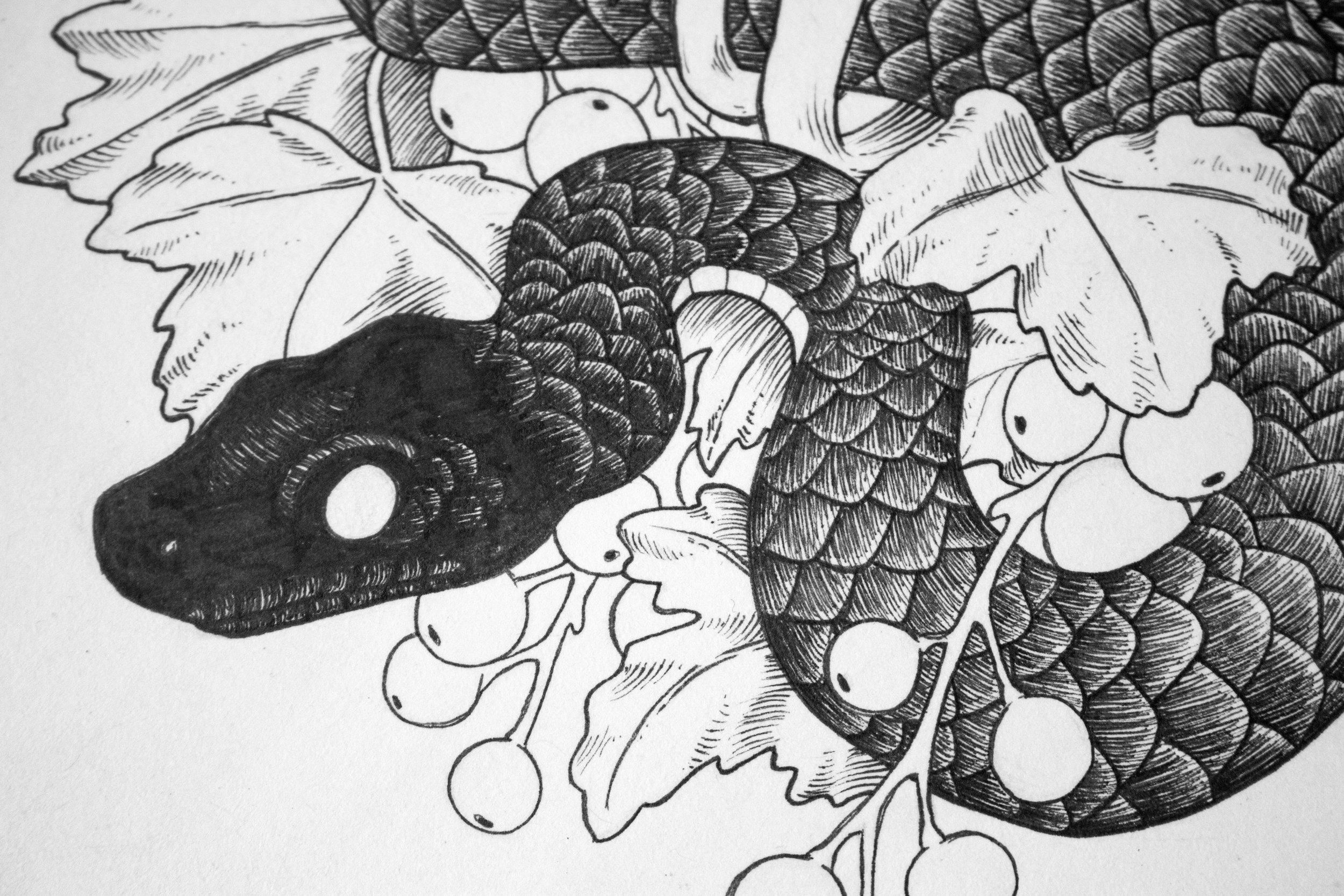 Jenn Sneary Illustration, Resurrect, Pen and Ink snake drawings